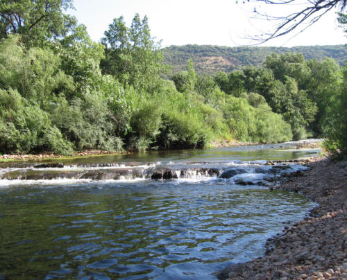 Fluss Durch Baden Baden